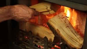 woodburning stove fire