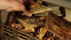 dry wood for burning